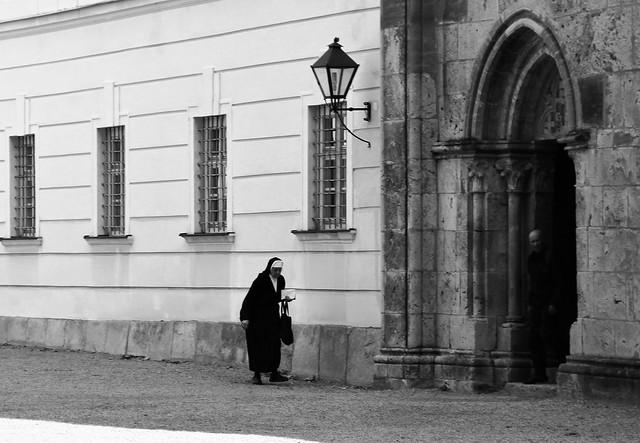 Heiligenkreuz (Wienerwald), Stiftskirche / Collegiate Church