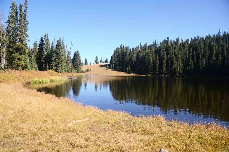 Wheeler Lake #1 (4)