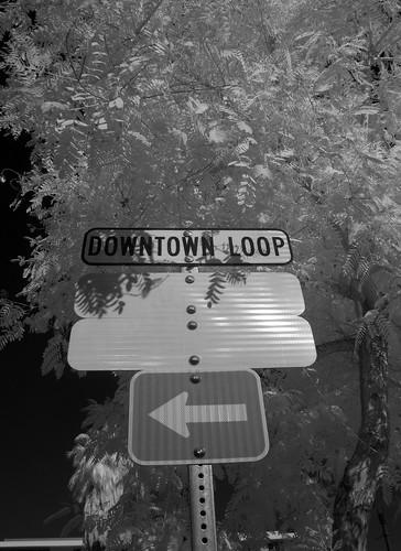 Downtown Loop (1)