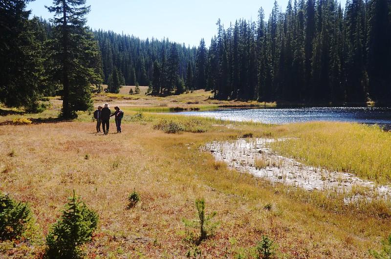 Wheeler Lake #2 (20)