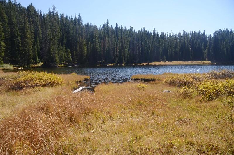 Wheeler Lake #1 (8)