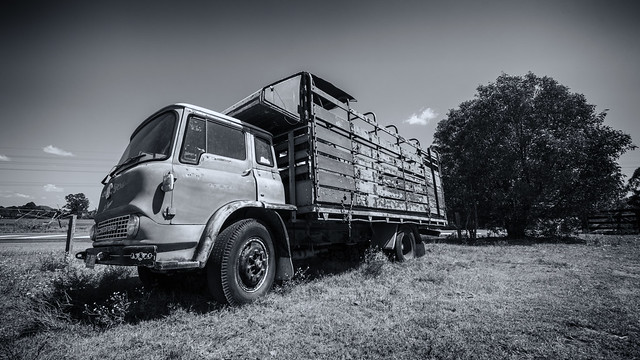 Old Cattle Truck