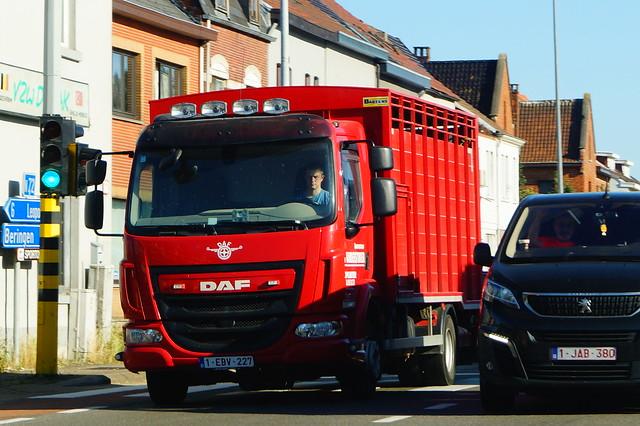 DAF LF Daycab Euro6 PX7.230 4x2 FA (2016) - Transport J. Vanderstukken NV & Zoon Oplinter, Tienen, Provincie Vlaams-Brabant, Vlaanderen Gewest, België