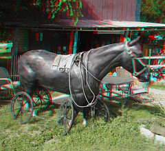3D STICK HORSE AT VALLEY MILLS TX RED CYAN ANAGLYPH