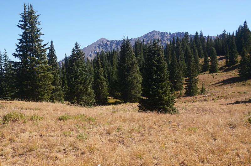 Wheeler Lakes Trail Hike (59)