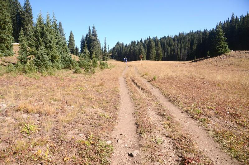 Wheeler Lakes Trail Hike (54)