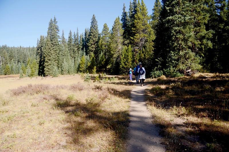 Wheeler Lakes Trail Hike (51)