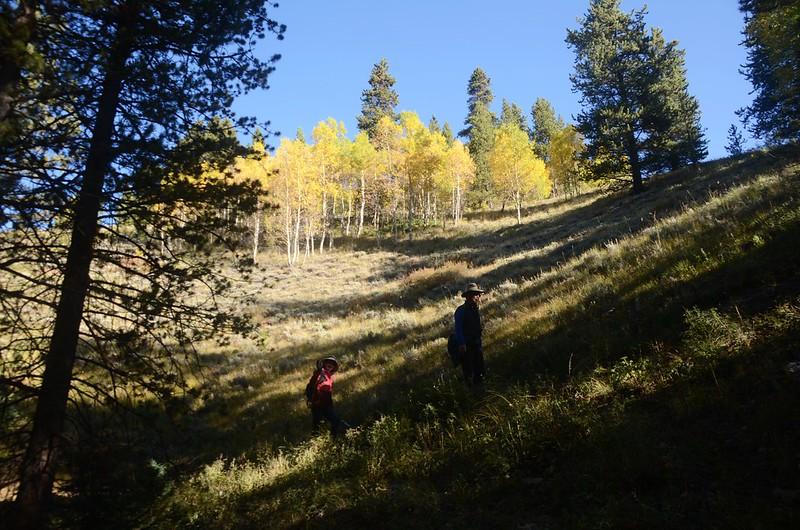 Wheeler Lakes Trail Hike (31)