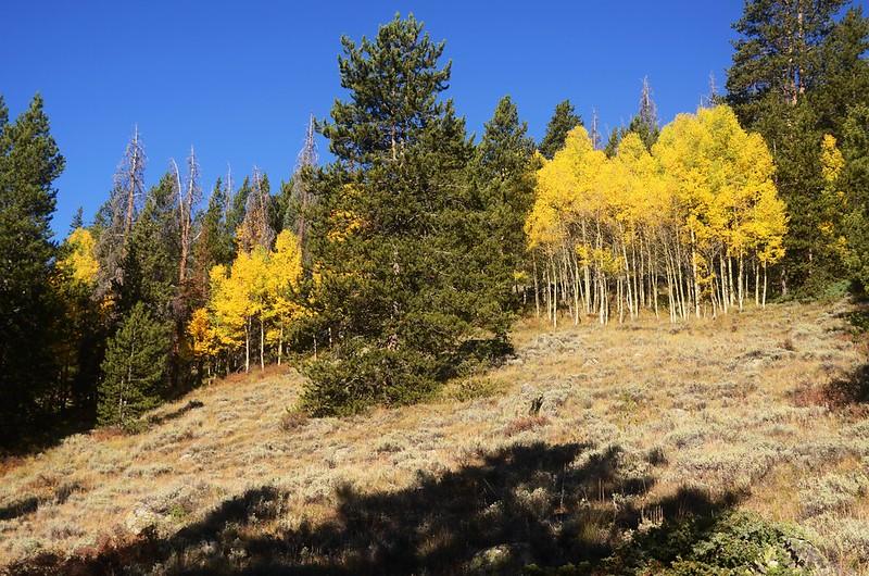 Wheeler Lakes Trail Hike (27)