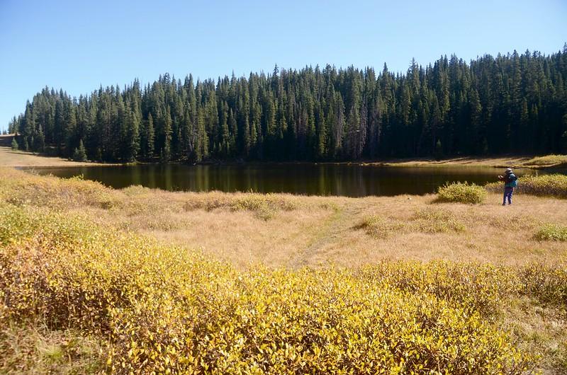 Wheeler Lake #1 (2)