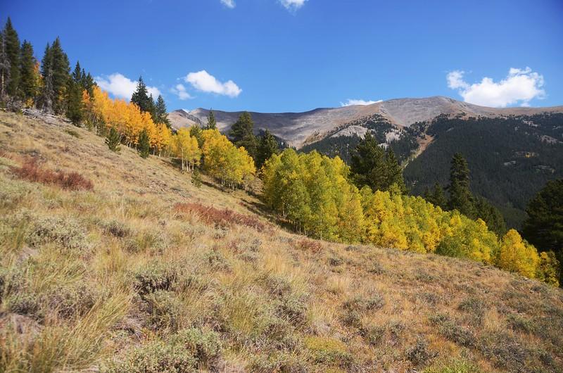 Wheeler Lakes Trail Hike (90)
