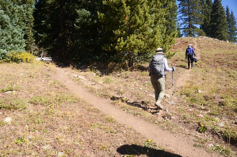 Wheeler Lakes spur trail junction #1