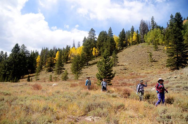 Wheeler Lakes Hike (115)