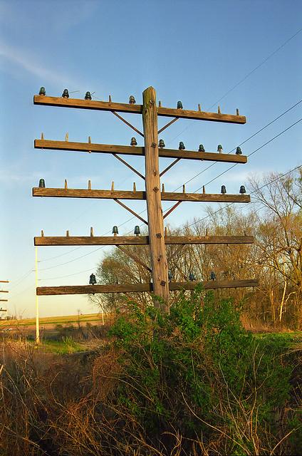 Abandoned Railroad Pole Line