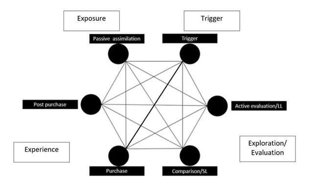 Hankins' conceptual model