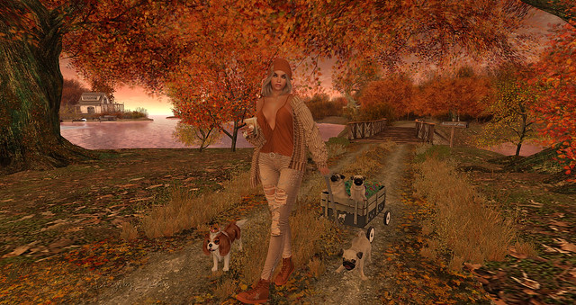 Luane's World - beautiful autumn colors