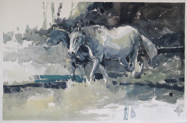 Two Horses 21 watercolour