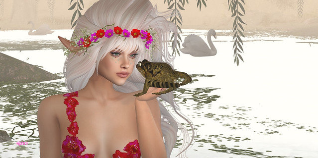 How do you kiss a frog into a prince?