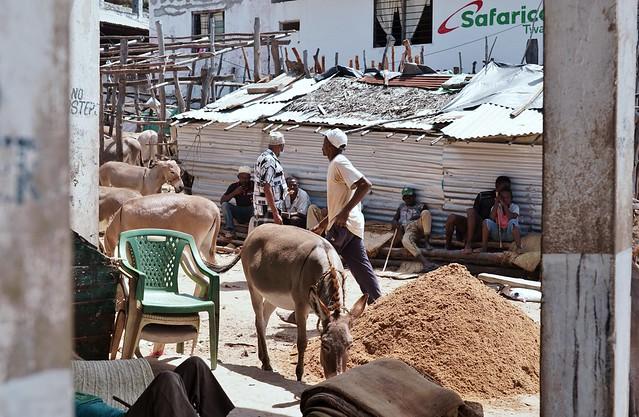 Lamu Old Town, Lenya