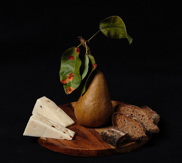 Pear, bread and cheese 1