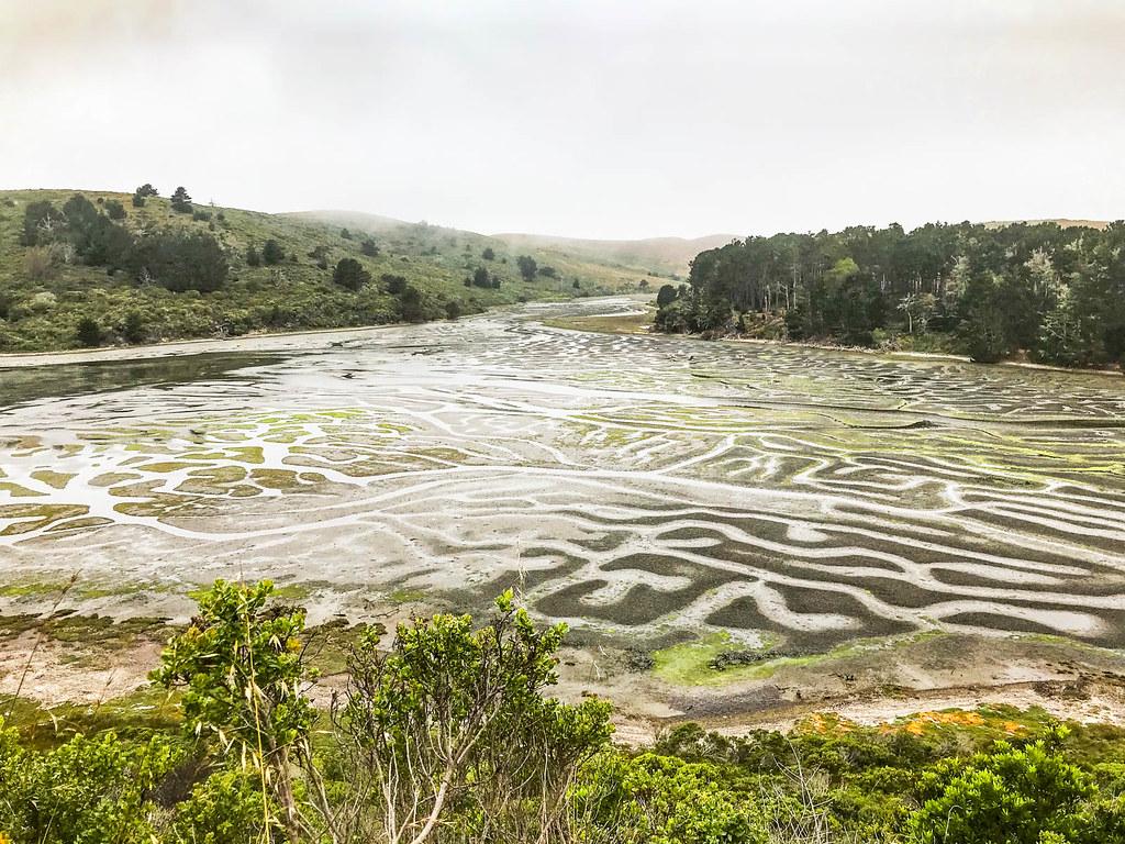 Mudflats by Estero Trail