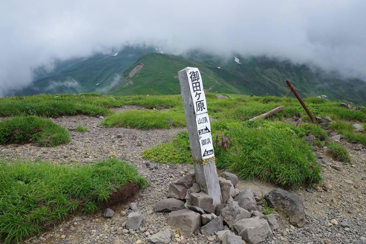 鳥海山・御田ヶ原