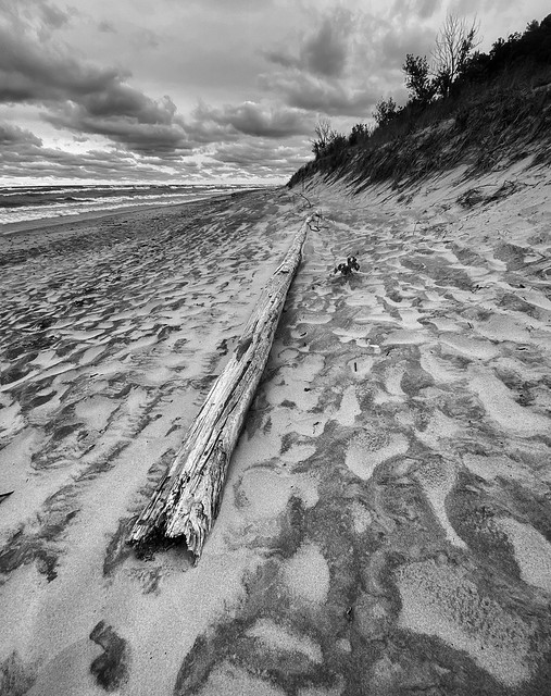 Driftwood and sand patterns