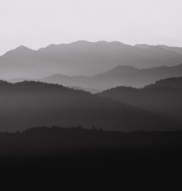 Misty Mountain Morning in Grey Scale