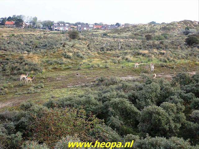 2021-09-22 Zandvoort 31 km (10)