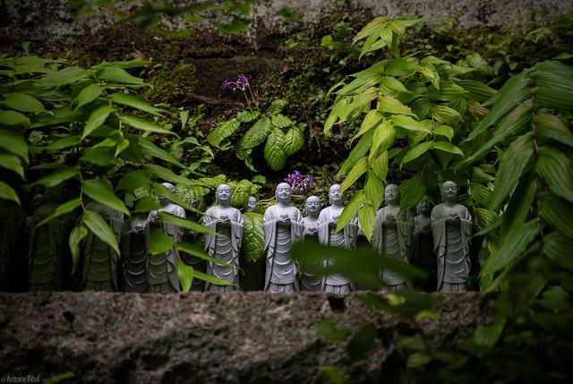 Hase-dera's Jizo