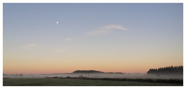 . Good morning Thursday... first frost today