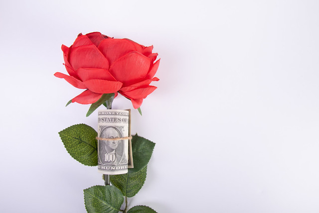 Red rose and money with on white background