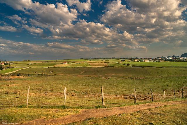 Countryside - El campo
