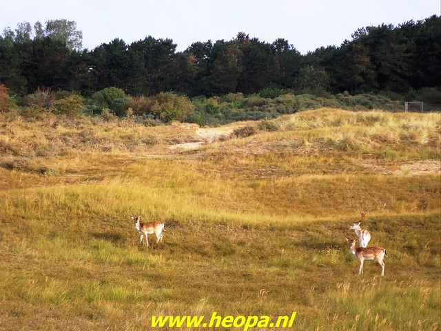 2021-09-22 Zandvoort 31 km (6)