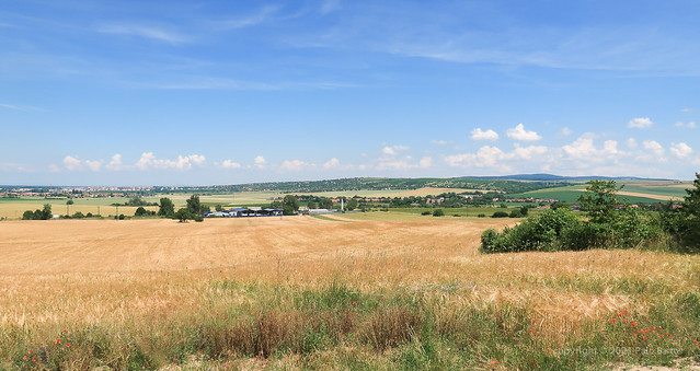 021Jun 27: Holic Fringe Landscape