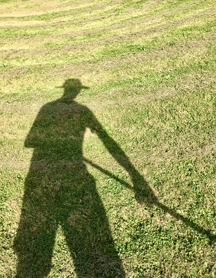Photo of my shadow, with a rake in hand, cast on the lawn with rows of grass yet to be collected.