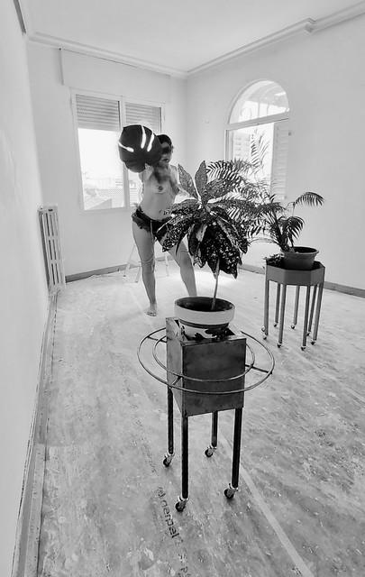 bailando con plantas - danza bionica madrid
