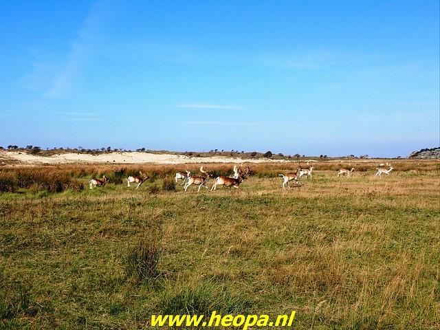 2021-09-22 Zandvoort 31 km (70)