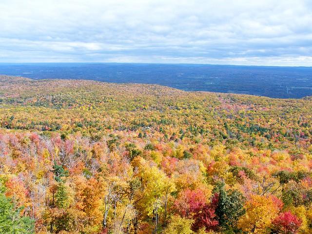 Gunks Autumn Landscape