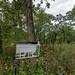 Festge County Park-167.jpg