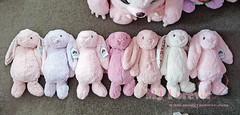 Jellycat Bashful Bunnies!