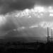 Morning of light Rain