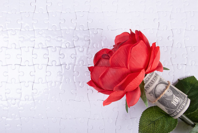Red rose with money
