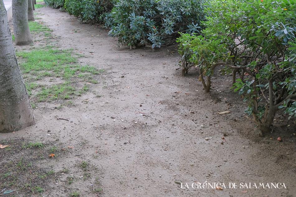 Parque Picasso (1 de 1)-16