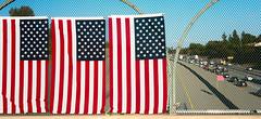 Freeway Flags