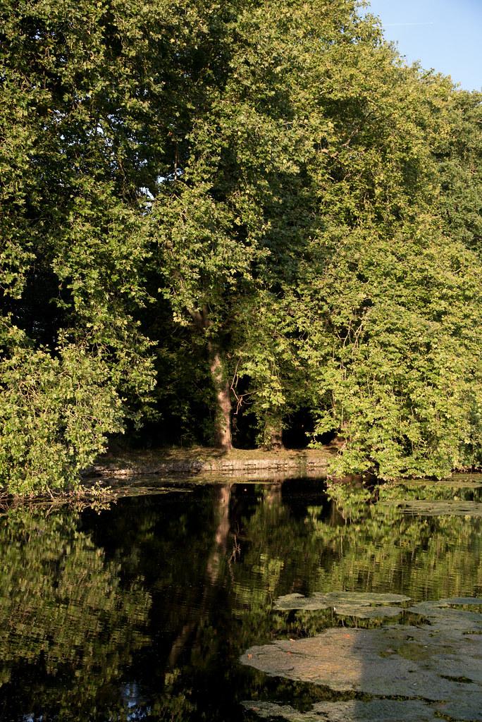 Parc du château de Rambouillet (Yvelines, France)