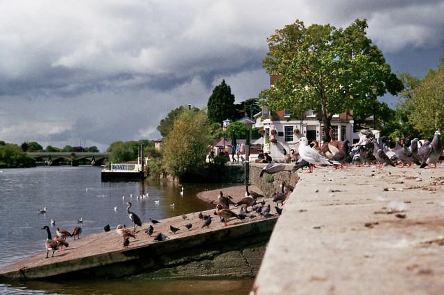 2020-08 Richmond upon Thames