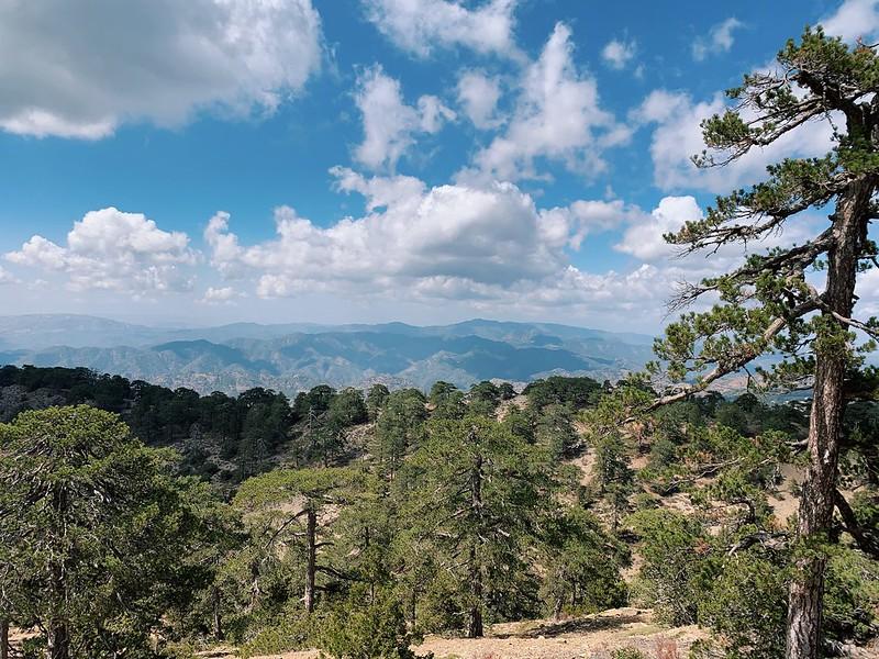 Troodos vuoret Atalanti trail Kypros