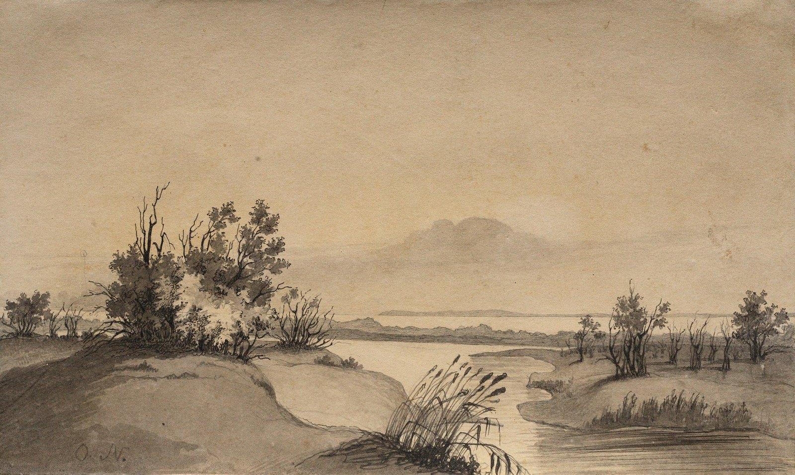 1848. Заросли на берегу Аральского моря