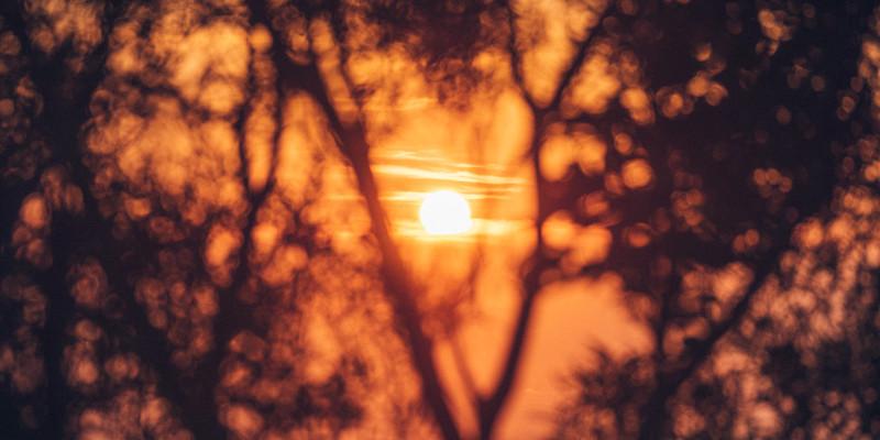 Sunset GH5mk2